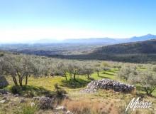 Veduta da Pelonga della piana di Tecchiena.