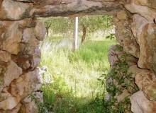 Visione dall'interno del tumulo aperto.
