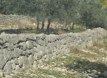 Opere murarie in pietrame a secco sul versante meridionale di Monte Capraro.